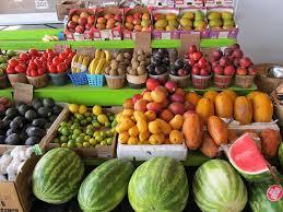 idei afaceri agricultura
