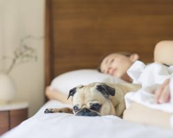 Camera-in-care-dormim-este-esentiala-pentru-confortul-nostru-personal